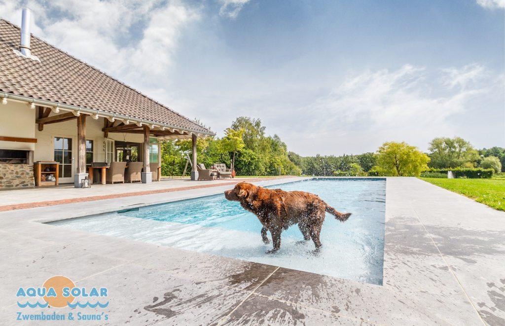 Aqua Solar Ecofinish coating foto 10